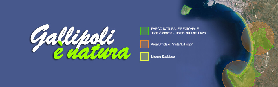 (Italiano) Slide-04